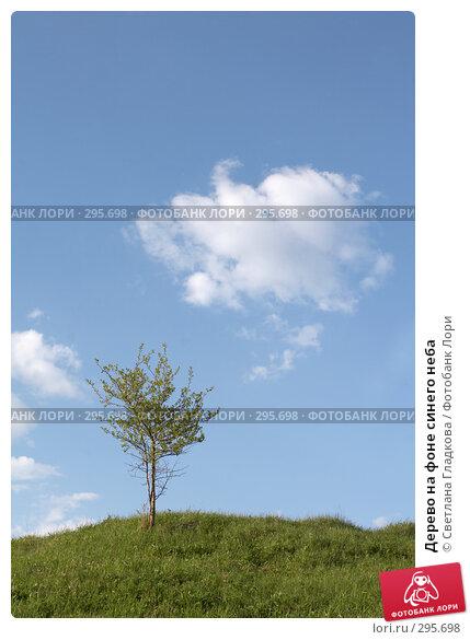 Дерево на фоне синего неба, фото № 295698, снято 27 апреля 2008 г. (c) Cветлана Гладкова / Фотобанк Лори