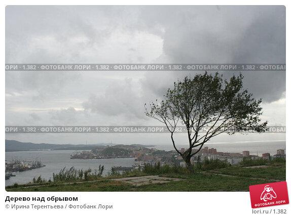 Дерево над обрывом, эксклюзивное фото № 1382, снято 16 сентября 2005 г. (c) Ирина Терентьева / Фотобанк Лори