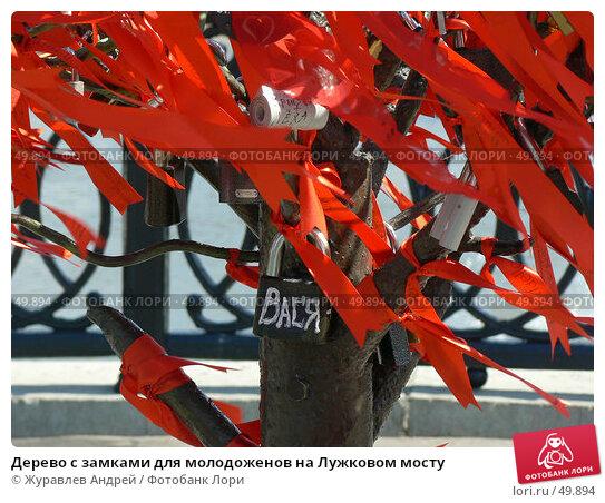 Дерево с замками для молодоженов на Лужковом мосту, эксклюзивное фото № 49894, снято 4 июня 2007 г. (c) Журавлев Андрей / Фотобанк Лори
