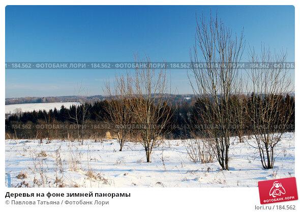 Деревья на фоне зимней панорамы, фото № 184562, снято 4 января 2008 г. (c) Павлова Татьяна / Фотобанк Лори