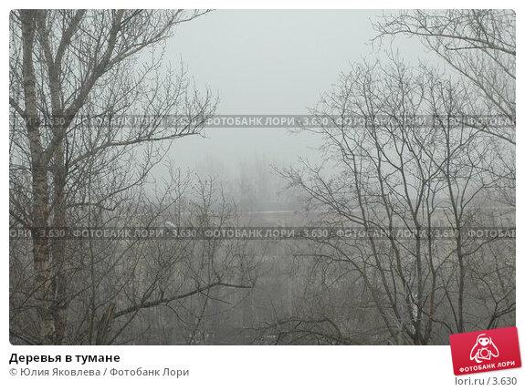 Купить «Деревья в тумане», фото № 3630, снято 10 апреля 2006 г. (c) Юлия Яковлева / Фотобанк Лори