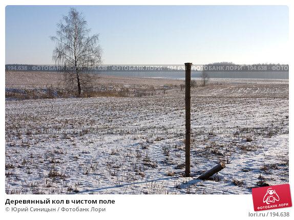 Деревянный кол в чистом поле, фото № 194638, снято 8 января 2008 г. (c) Юрий Синицын / Фотобанк Лори