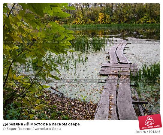 Деревянный мосток на лесном озере, фото № 104846, снято 29 марта 2017 г. (c) Борис Панасюк / Фотобанк Лори