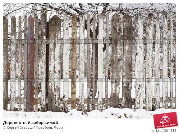 Деревянный забор зимой, фото № 301818, снято 24 декабря 2007 г. (c) Сергей Старуш / Фотобанк Лори