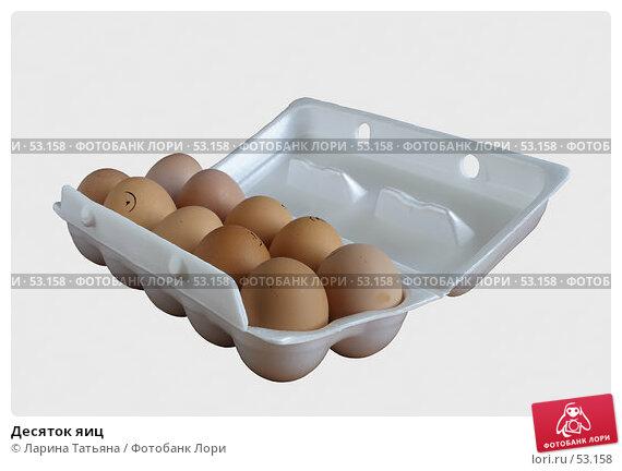 Десяток яиц, фото № 53158, снято 17 июня 2007 г. (c) Ларина Татьяна / Фотобанк Лори