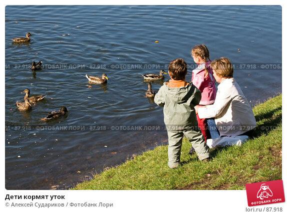 Купить «Дети кормят уток», фото № 87918, снято 22 сентября 2007 г. (c) Алексей Судариков / Фотобанк Лори