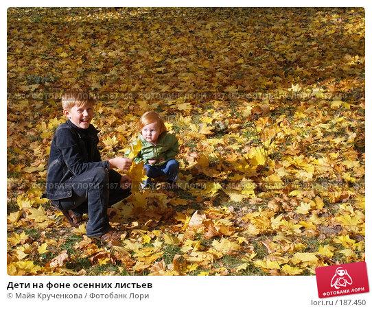 Купить «Дети на фоне осенних листьев», фото № 187450, снято 28 сентября 2007 г. (c) Майя Крученкова / Фотобанк Лори