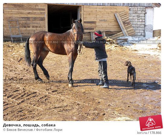 Девочка, лошадь, собака, фото № 178866, снято 30 марта 2007 г. (c) Бяков Вячеслав / Фотобанк Лори