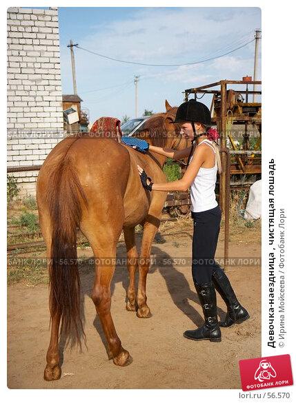 Девочка-наездница , чистящая лошадь, эксклюзивное фото № 56570, снято 17 июня 2007 г. (c) Ирина Мойсеева / Фотобанк Лори