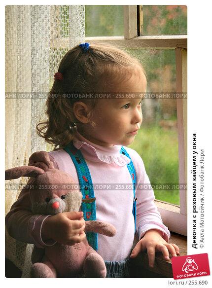 Купить «Девочка с розовым зайцем у окна», фото № 255690, снято 25 июня 2007 г. (c) Алла Матвейчик / Фотобанк Лори