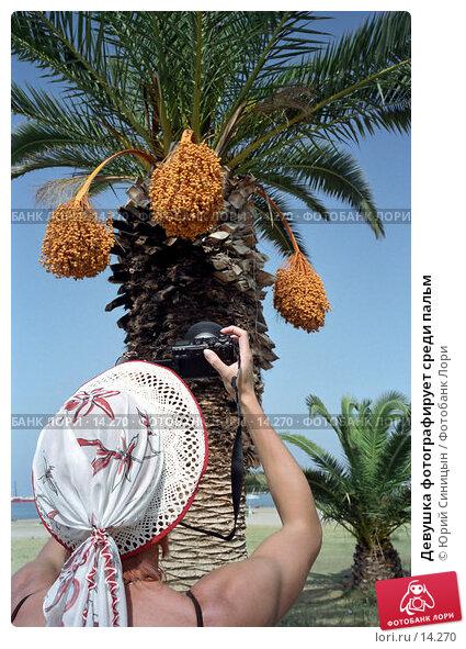 Девушка фотографирует среди пальм, фото № 14270, снято 23 января 2017 г. (c) Юрий Синицын / Фотобанк Лори