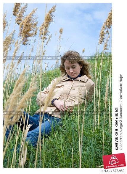 Фото девушка в камышах снимают прелести