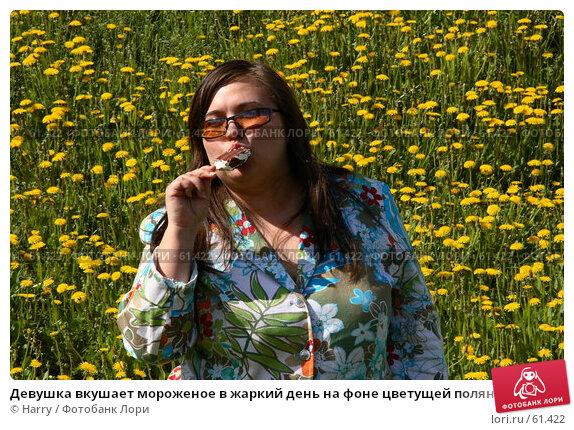 Девушка вкушает мороженое в жаркий день на фоне цветущей полянки, фото № 61422, снято 23 мая 2006 г. (c) Harry / Фотобанк Лори