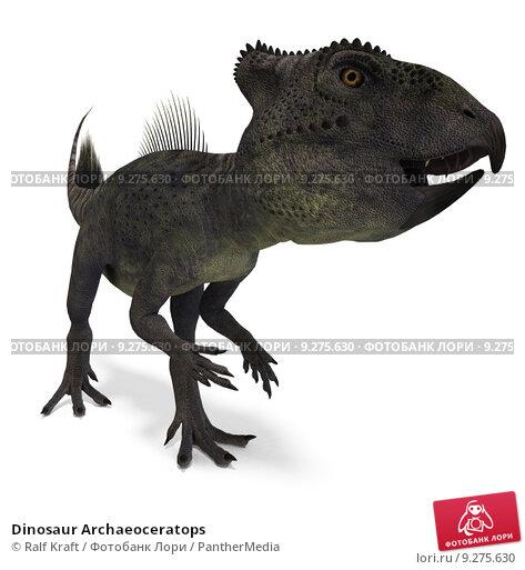 Купить «Dinosaur Archaeoceratops», фото № 9275630, снято 15 сентября 2019 г. (c) PantherMedia / Фотобанк Лори