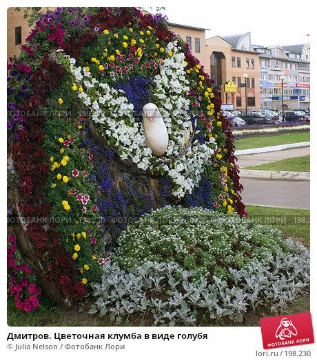Дмитров. Цветочная клумба в виде голубя, фото № 198230, снято 27 июля 2007 г. (c) Julia Nelson / Фотобанк Лори