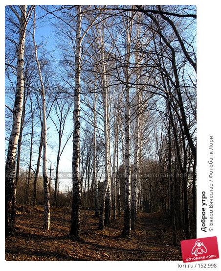 Купить «Доброе утро», фото № 152998, снято 8 апреля 2007 г. (c) Бяков Вячеслав / Фотобанк Лори