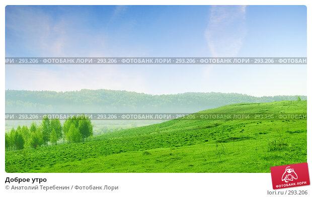 Доброе утро, фото № 293206, снято 10 мая 2008 г. (c) Анатолий Теребенин / Фотобанк Лори