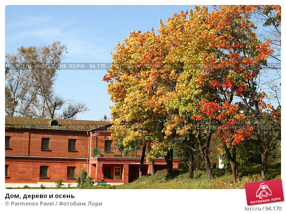 Дом, дерево и осень, фото № 94170, снято 19 сентября 2007 г. (c) Parmenov Pavel / Фотобанк Лори