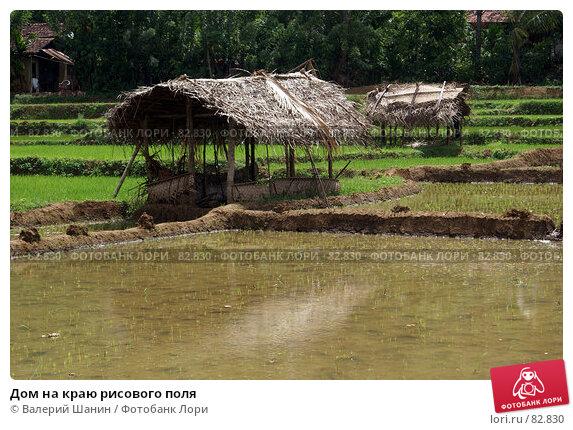 Дом на краю рисового поля, фото № 82830, снято 13 июня 2007 г. (c) Валерий Шанин / Фотобанк Лори