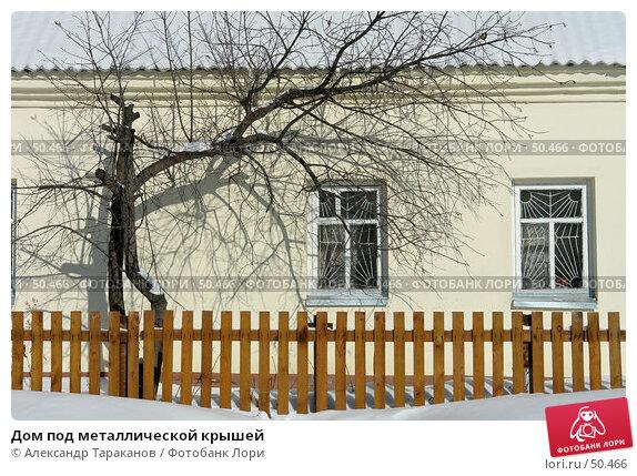 Купить «Дом под металлической крышей», эксклюзивное фото № 50466, снято 26 апреля 2018 г. (c) Александр Тараканов / Фотобанк Лори