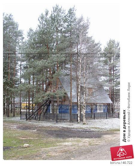 Дом в деревьях, фото № 40722, снято 30 апреля 2007 г. (c) Удодов Алексей / Фотобанк Лори
