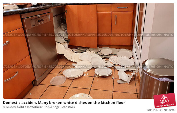 Domestic acciden. Many broken white dishes on the kitchen floor. Стоковое фото, фотограф Ruddy Gold / age Fotostock / Фотобанк Лори