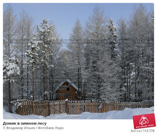Домик в зимнем лесу, фото № 113778, снято 5 ноября 2007 г. (c) Владимир Ильин / Фотобанк Лори