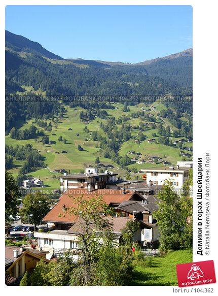 Купить «Домики в горах Швейцарии», эксклюзивное фото № 104362, снято 24 апреля 2018 г. (c) Natalia Nemtseva / Фотобанк Лори