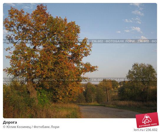 Дорога, фото № 236602, снято 29 сентября 2007 г. (c) Юлия Козинец / Фотобанк Лори