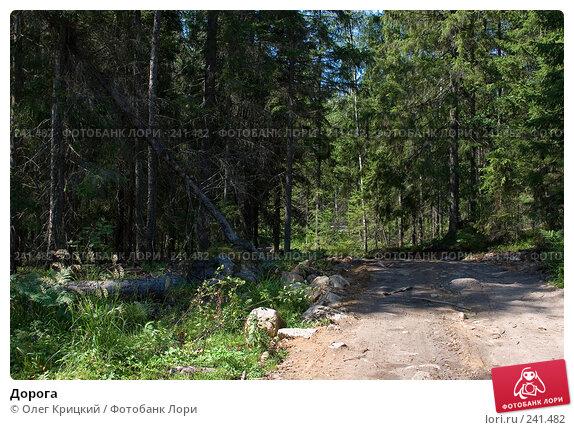Дорога, фото № 241482, снято 18 июля 2007 г. (c) Олег Крицкий / Фотобанк Лори