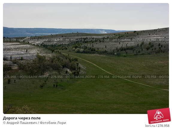 Дорога через поле, фото № 278958, снято 2 мая 2007 г. (c) Андрей Пашкевич / Фотобанк Лори