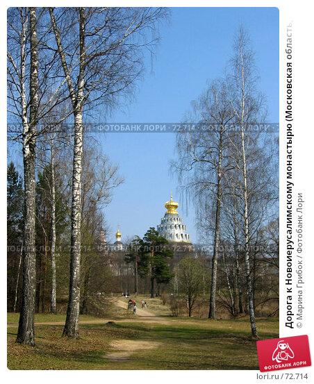 Дорога к Новоиерусалимскому монастырю (Московская область, Истринский район), фото № 72714, снято 1 мая 2006 г. (c) Марина Грибок / Фотобанк Лори