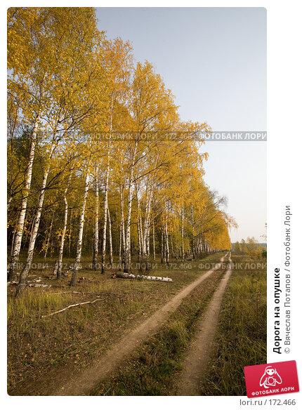 Купить «Дорога на опушке», фото № 172466, снято 19 октября 2007 г. (c) Вячеслав Потапов / Фотобанк Лори