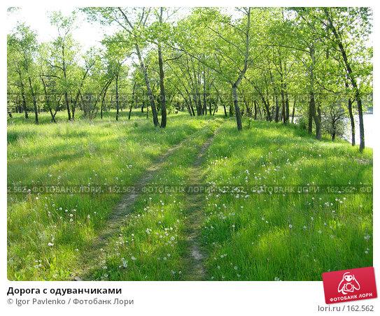 Дорога с одуванчиками, фото № 162562, снято 14 мая 2006 г. (c) Igor Pavlenko / Фотобанк Лори