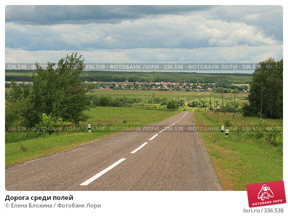 Дорога среди полей, фото № 336538, снято 26 июня 2008 г. (c) Елена Блохина / Фотобанк Лори