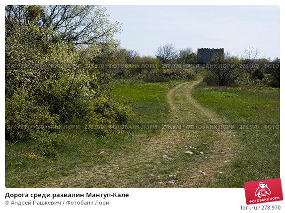 Дорога среди развалин Мангуп-Кале, фото № 278970, снято 5 мая 2007 г. (c) Андрей Пашкевич / Фотобанк Лори