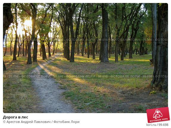 Дорога в лес, фото № 99698, снято 15 сентября 2007 г. (c) Арестов Андрей Павлович / Фотобанк Лори