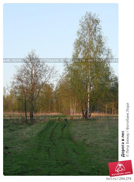 Дорога в лес, фото № 294274, снято 3 мая 2008 г. (c) Петр Бюнау / Фотобанк Лори