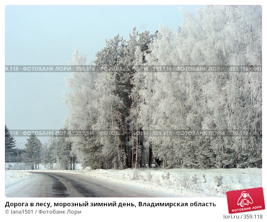 Дорога в лесу, морозный зимний день, Владимирская область, эксклюзивное фото № 359118, снято 8 января 2008 г. (c) lana1501 / Фотобанк Лори