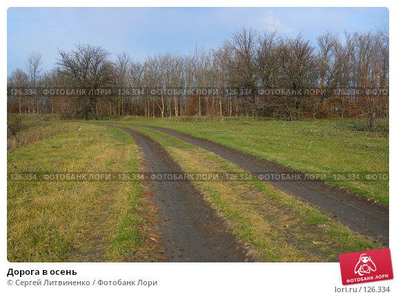 Дорога в осень, фото № 126334, снято 25 ноября 2007 г. (c) Сергей Литвиненко / Фотобанк Лори