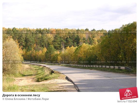 Дорога в осеннем лесу, фото № 132694, снято 4 октября 2007 г. (c) Елена Блохина / Фотобанк Лори