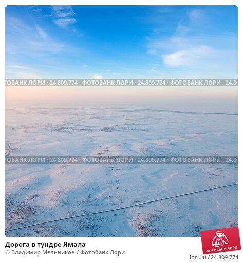 Дорога в тундре Ямала, фото № 24809774, снято 21 января 2015 г. (c) Владимир Мельников / Фотобанк Лори