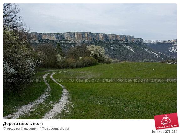 Дорога вдоль поля, фото № 278954, снято 1 мая 2007 г. (c) Андрей Пашкевич / Фотобанк Лори
