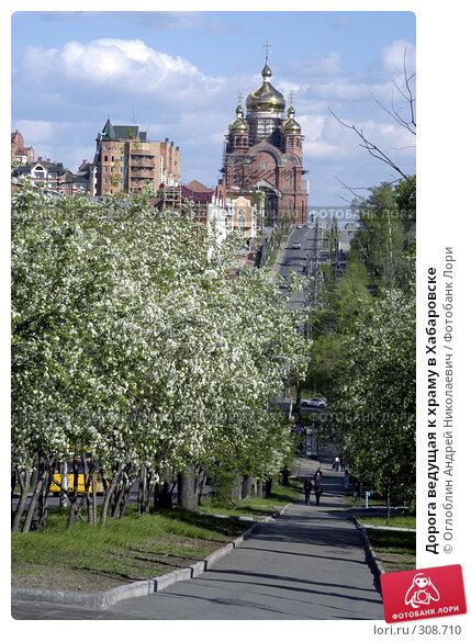 Дорога ведущая к храму в Хабаровске, фото № 308710, снято 24 февраля 2017 г. (c) Оглоблин Андрей Николаевич / Фотобанк Лори