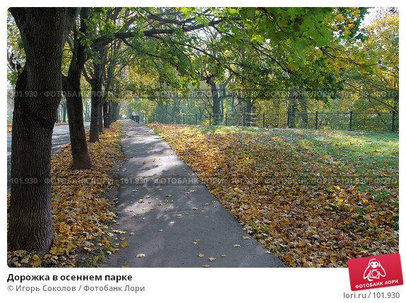 Дорожка в осеннем парке, фото № 101930, снято 21 июля 2017 г. (c) Игорь Соколов / Фотобанк Лори