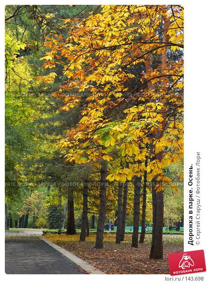 Дорожка в парке. Осень., фото № 143698, снято 27 октября 2007 г. (c) Сергей Старуш / Фотобанк Лори