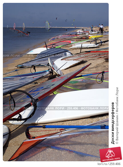 Купить «Доски виндсерферов», фото № 259406, снято 27 сентября 2007 г. (c) Валерий Шанин / Фотобанк Лори