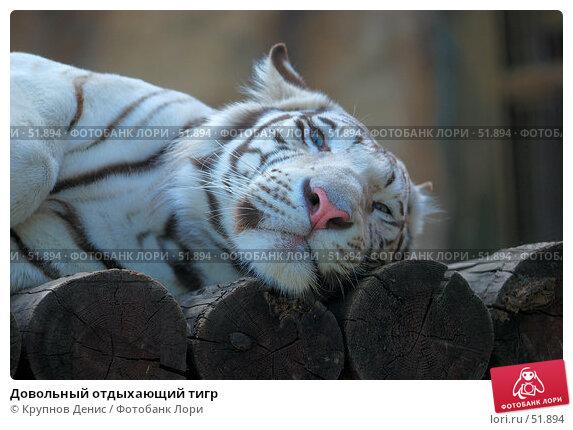 Довольный отдыхающий тигр, фото № 51894, снято 11 мая 2007 г. (c) Крупнов Денис / Фотобанк Лори