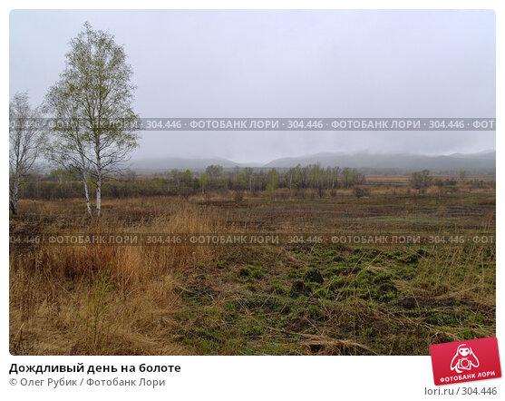 Дождливый день на болоте, фото № 304446, снято 27 апреля 2008 г. (c) Олег Рубик / Фотобанк Лори
