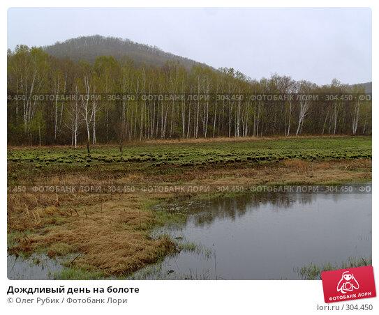 Купить «Дождливый день на болоте», фото № 304450, снято 27 апреля 2008 г. (c) Олег Рубик / Фотобанк Лори